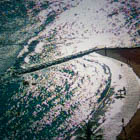 025, HONOLULU, USA, Photographic Still of Live Streaming Webcam