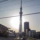 TheBuzzProject, Chapter 9 -Tokyo, Japan, 2158